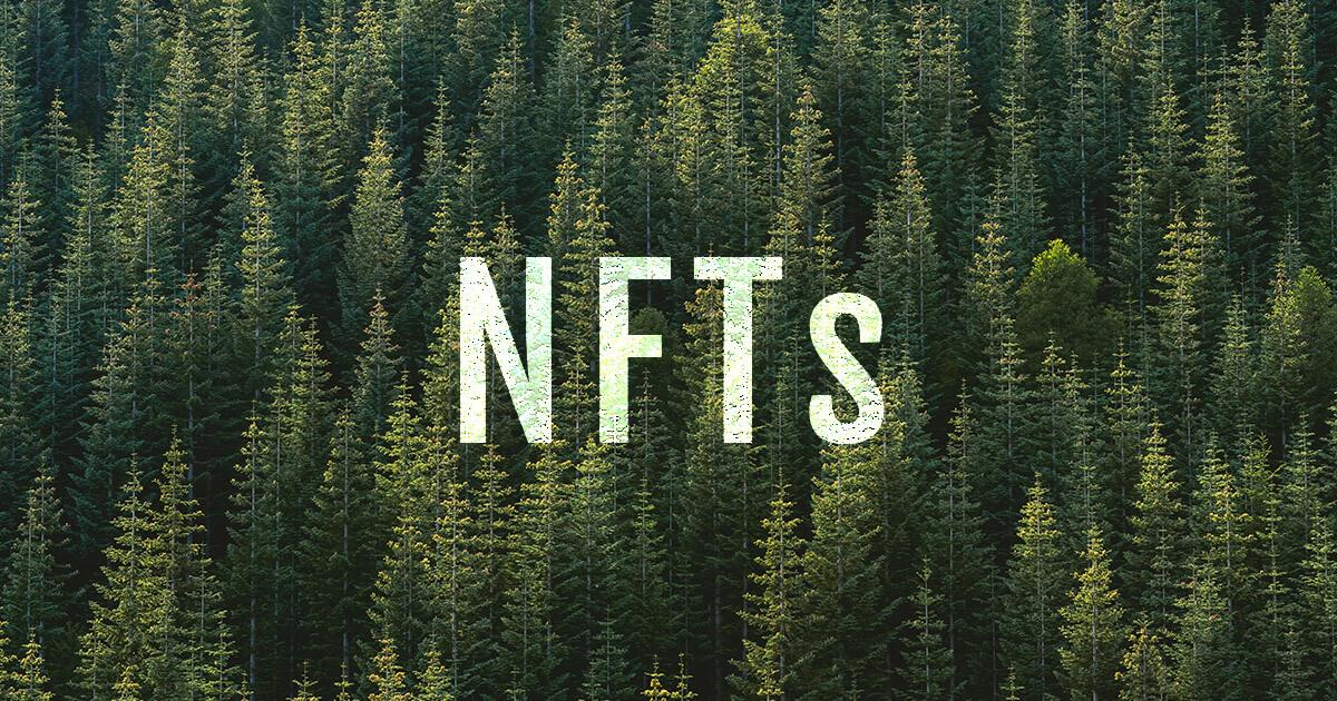 Crypto project selling NFTs wants to plant 1 million trees with 10% of sales proceeds