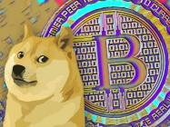 Survey: 1 in 4 Americans consider Dogecoin the 'new Bitcoin'