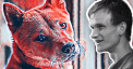 Vitalik Buterin donates $1 billion in Shiba Inu coin (SHIB) to India's COVID fight