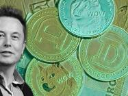 Sorry pleb, Elon Musk is really your 'Dogefather'