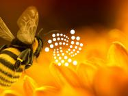 IOTA 2.0 'Nectar' goes live, here's how the network will improve