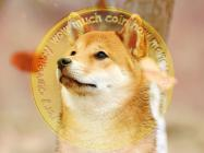 Where now for Dogecoin as the Shiba Inu-inspired token continues to slide?