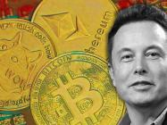 """""""It's not possible to destroy crypto,"""" says 'Dogefather' Elon Musk"""