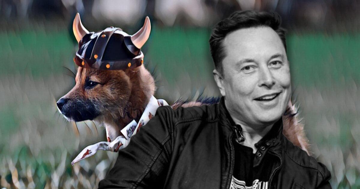 Shiba Inu-inspired 'Floki Inu' pumps 250% after Elon Musk names his pet that