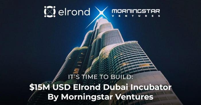 Morningstar Ventures To Invest $15M USD In Projects Building On Elrond Network And Opens An Elrond Incubator in Dubai