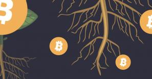 CryptoMeister explains why Taproot is so important