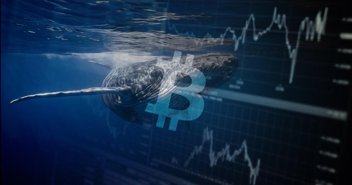 On-chain data shows Bitcoin (BTC) whales are 'hodling' on as BTC nears $60,000