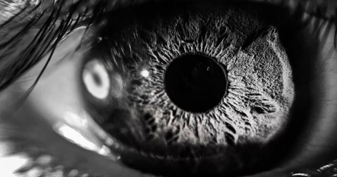 Worldcoin wants to scan your eyeballs. But its founder says that's the 'future of privacy'