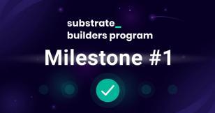 Pontem Network Joins Polkadot's Substrate Builder's Grant Program