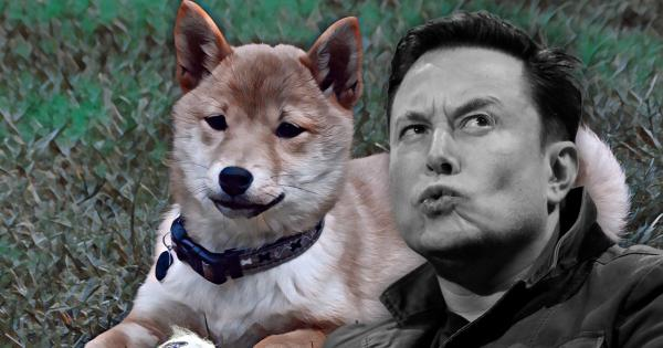 Shiba Inu-inspired crypto coins see price spike following Musk's latest tweet