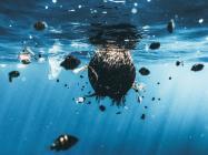 VeChain (VET) verifies results of a 305 metric tonne plastic clean-up in the ocean