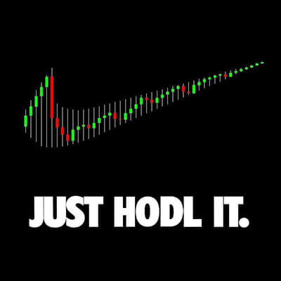 Just HODL It.