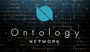 Ontology Technicals