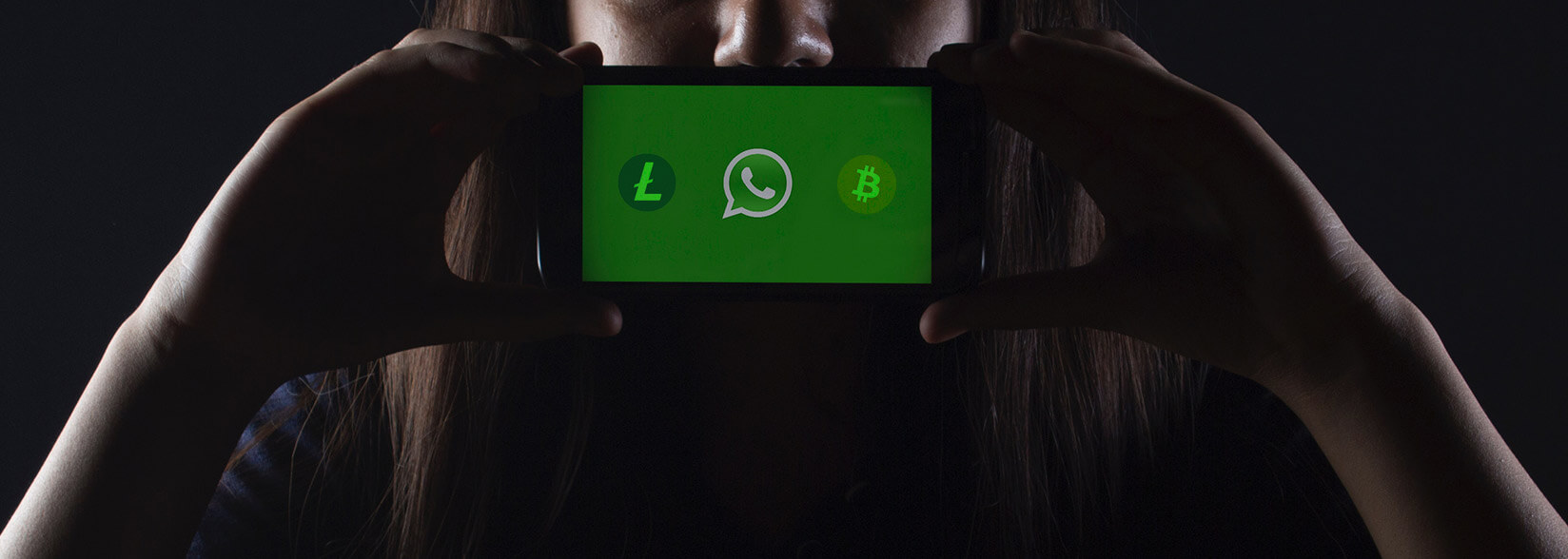 Send Bitcoin And Litecoin Transactions Over Whatsapp Cryptoslate