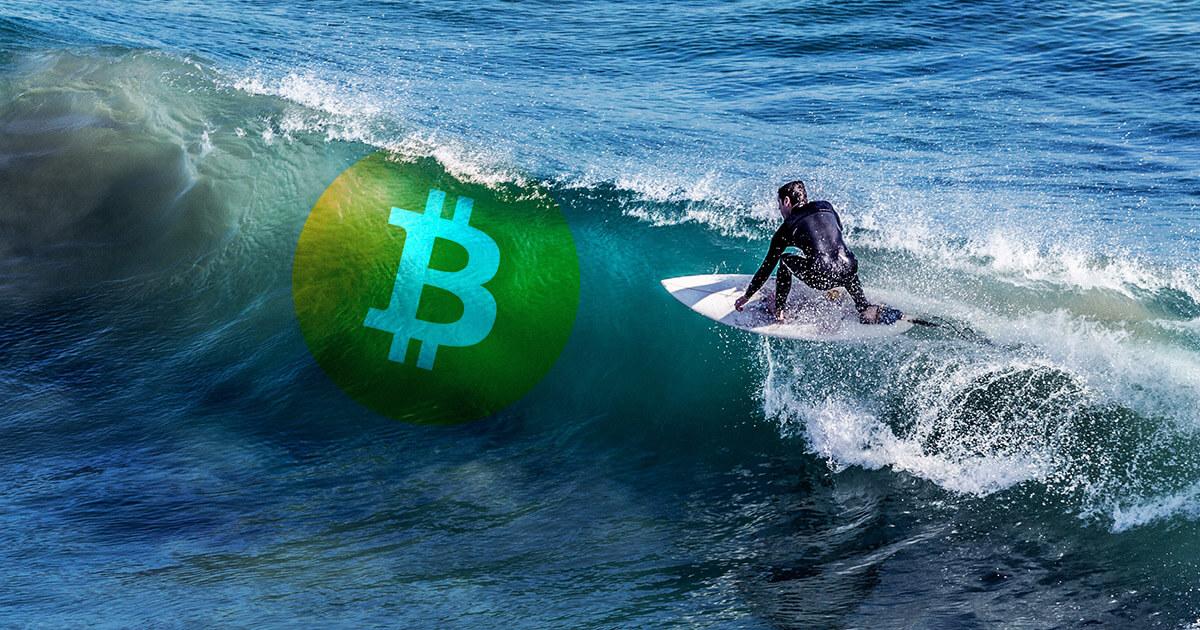 bitcoin surf)