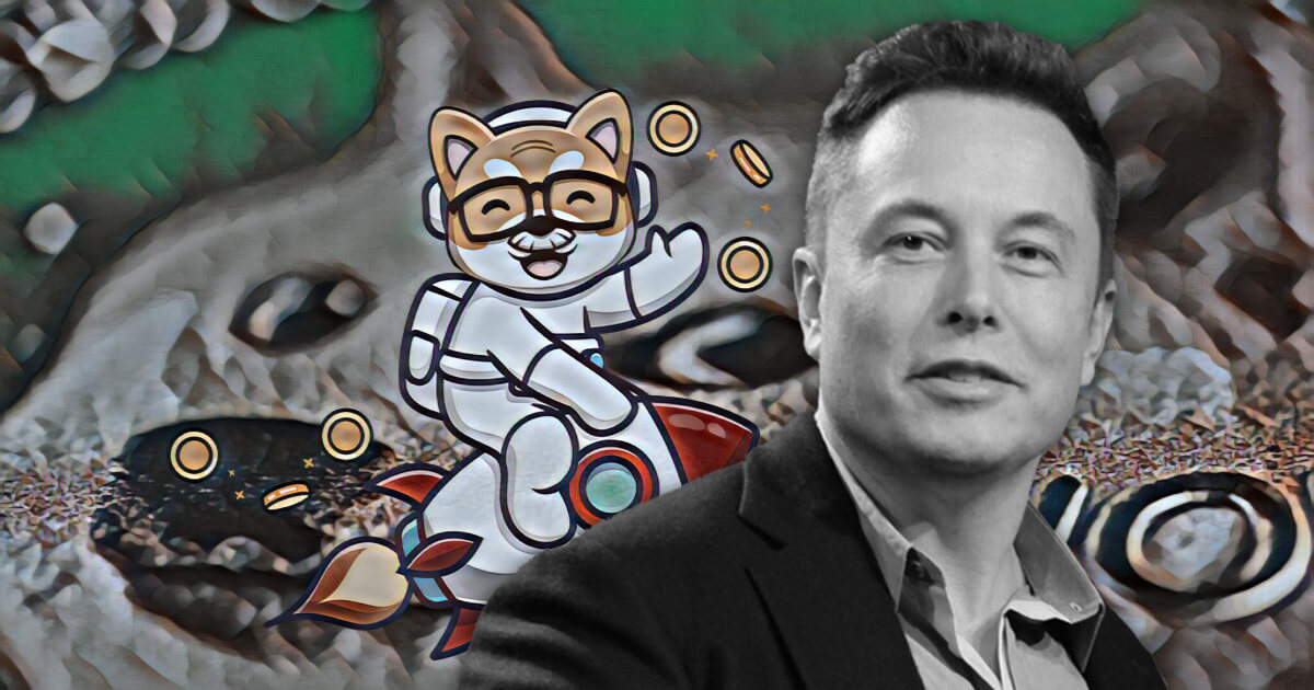 Daddy Doge token's price pumped by Elon Musk's casual shout | CryptoSlate