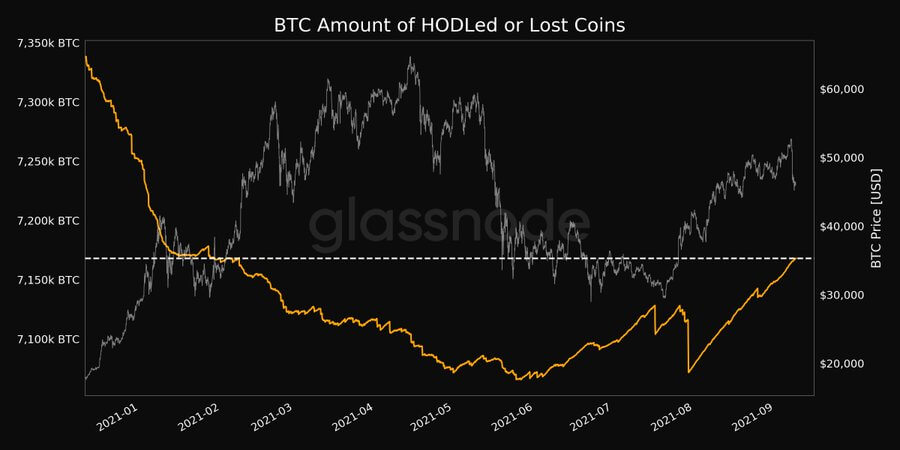 Lost and hodled Bitcoin